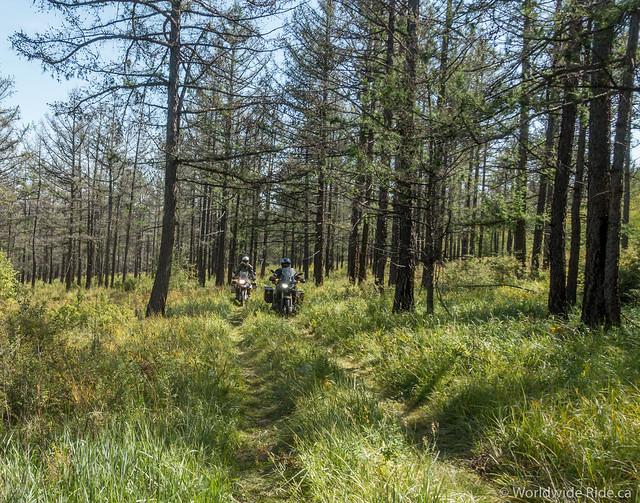 Eastern Mogolia Loop-35