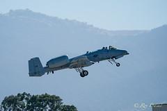 A-10 Thunderbolt/Warthog – 2