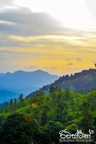 iamnikon d3300 nikon nikonasia srilanka kandy landscape matale riverston