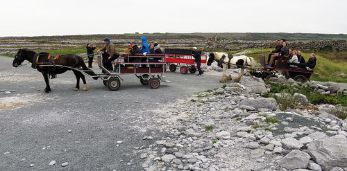 Horse carts delivering tourists to the shipwreck on the Aran Island of Inisheer in Ireland