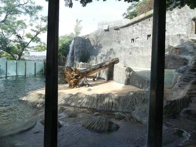 Eisbäranlage, Zoo Prag