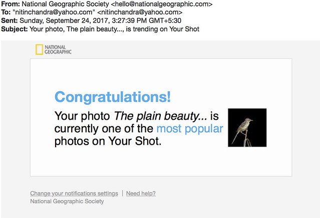 Your photo The plain beauty is trending on Your Shot