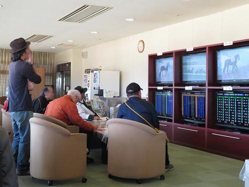 佐賀競馬場のロイヤル席でオッズ画面を眺める常連たち