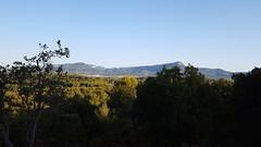 Vue vers les Monts Toulonnais