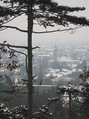 IMG_8503 St. Christoph+Hochquellwasserleitung, 24.1.2010