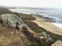 She shoots selfies in the meadow/Carmel Meadows