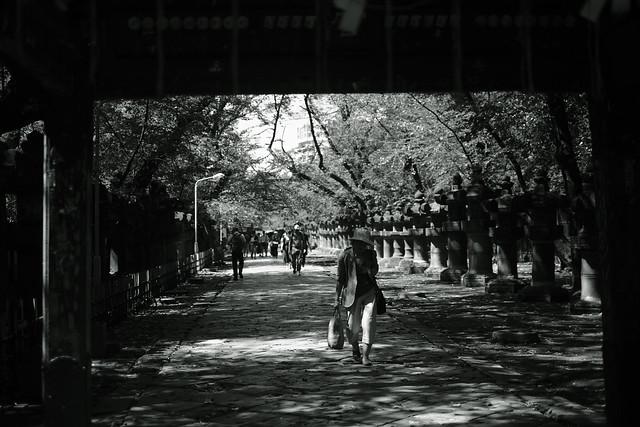 light&shadow@Ueno Toshogu, Tokyo