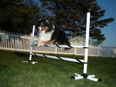 Brynn Jumping, April 07, 2004