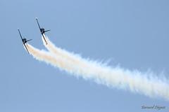 Patrouille Sparflex Aero L-39C Albatros - Photo of Ladiville
