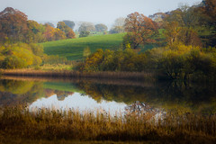 Blelham Tarn - Lake District