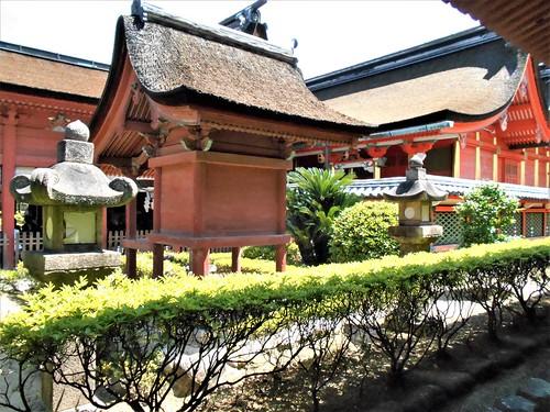 jp-matsuyama-Isaniwa-sanctuaire (4)