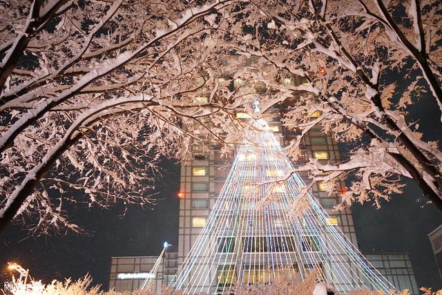 十年,京都四季 | 卷五 | 京都與我,有時還有關西 | 13