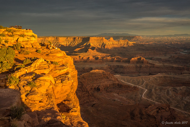 Golden Dead Horse Point