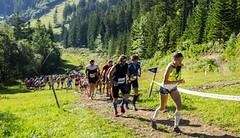 Krkonošská padesátka KTRC, to je královský trail roku