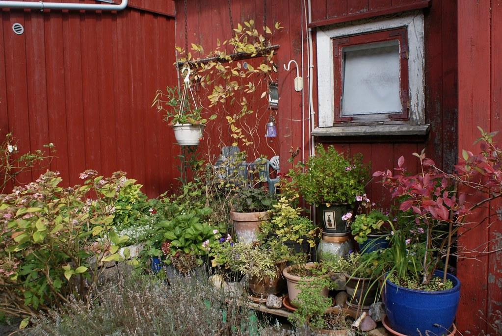 Christiania a des airs de 3e jardin botanique de Copenhague.
