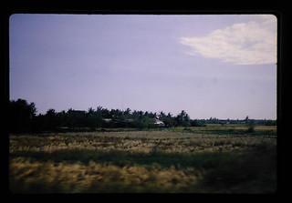 車窓から見た田園風景