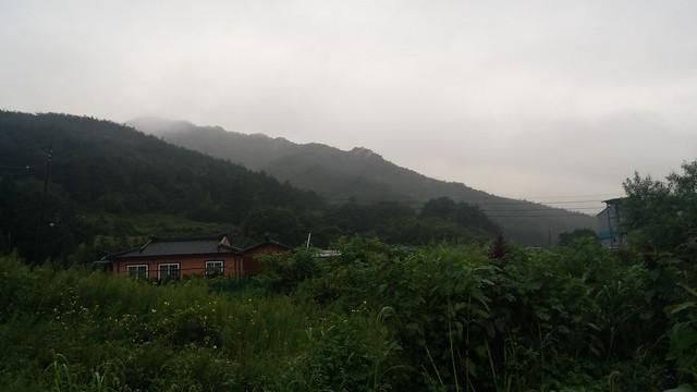 비오는 아침
