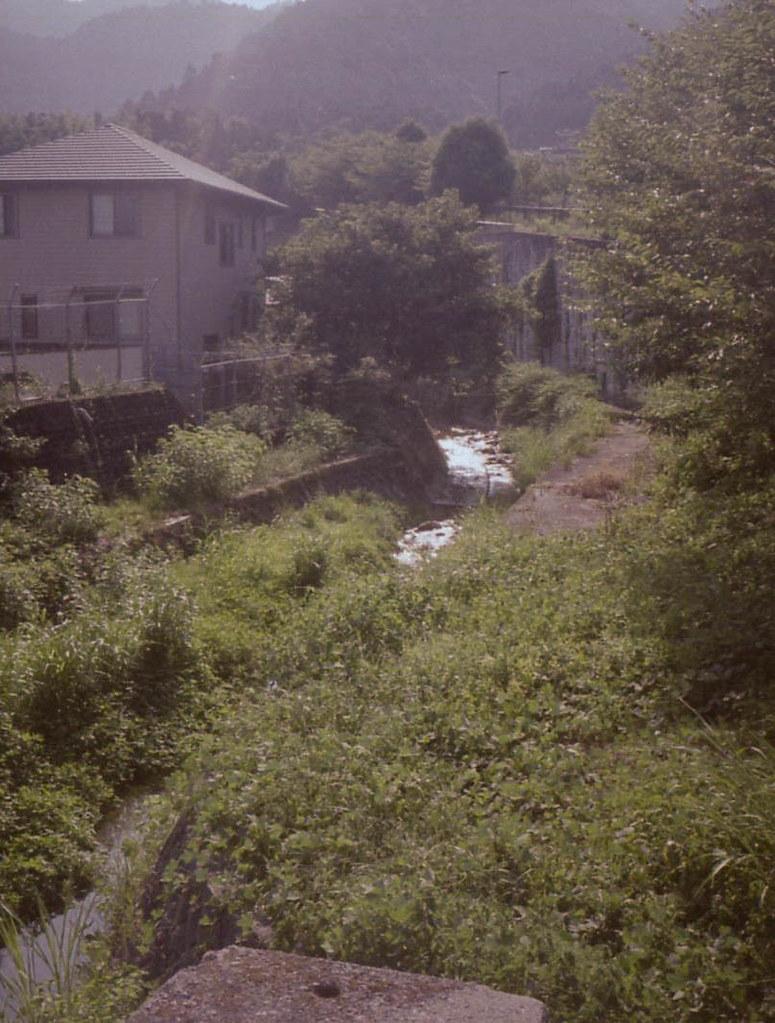 color-19829-2.jpg