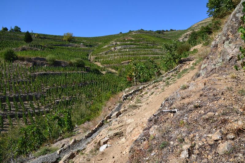 Fondi PSR per zone montane - Photo by Jeanne Menjoulet on Foter.com / CC BY