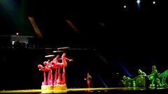 Cirque du Soleil OVO VIII