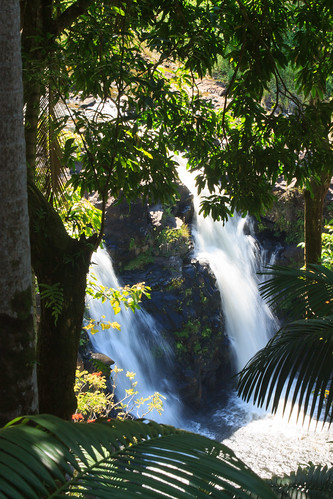 hi umaumastream umaumafalls cliffs tier hamakua hawaii hawaiʻi umaumafallsandziplineexperience waterfall forest hawaiianislands usa tieredwaterfall leaves trees bigisland pool