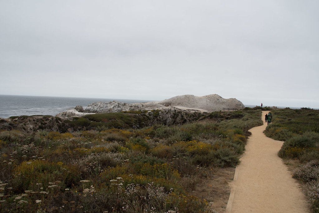 Bird Island Trail | Point Lobos | Northern California State Parks