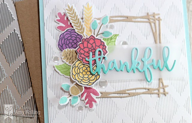 Amy_ThankfulThoughts2