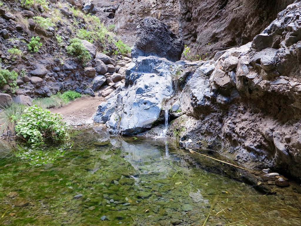 Ponds in Masca