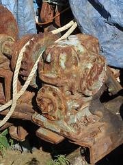 Crofts rust
