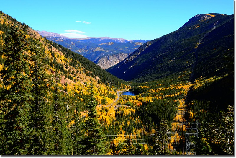 Fall colors, Guanella Pass, Colorado (31)