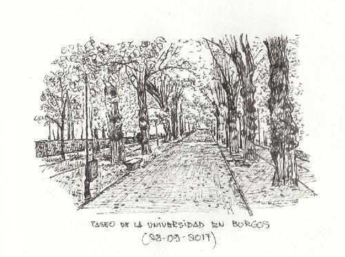 Paseo de la Universidad en Burgos