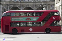 Wrightbus NRM NBFL - LTZ 1301 - LT301 - Go Ahead London - London 2017 - Steven Gray - IMG_5842