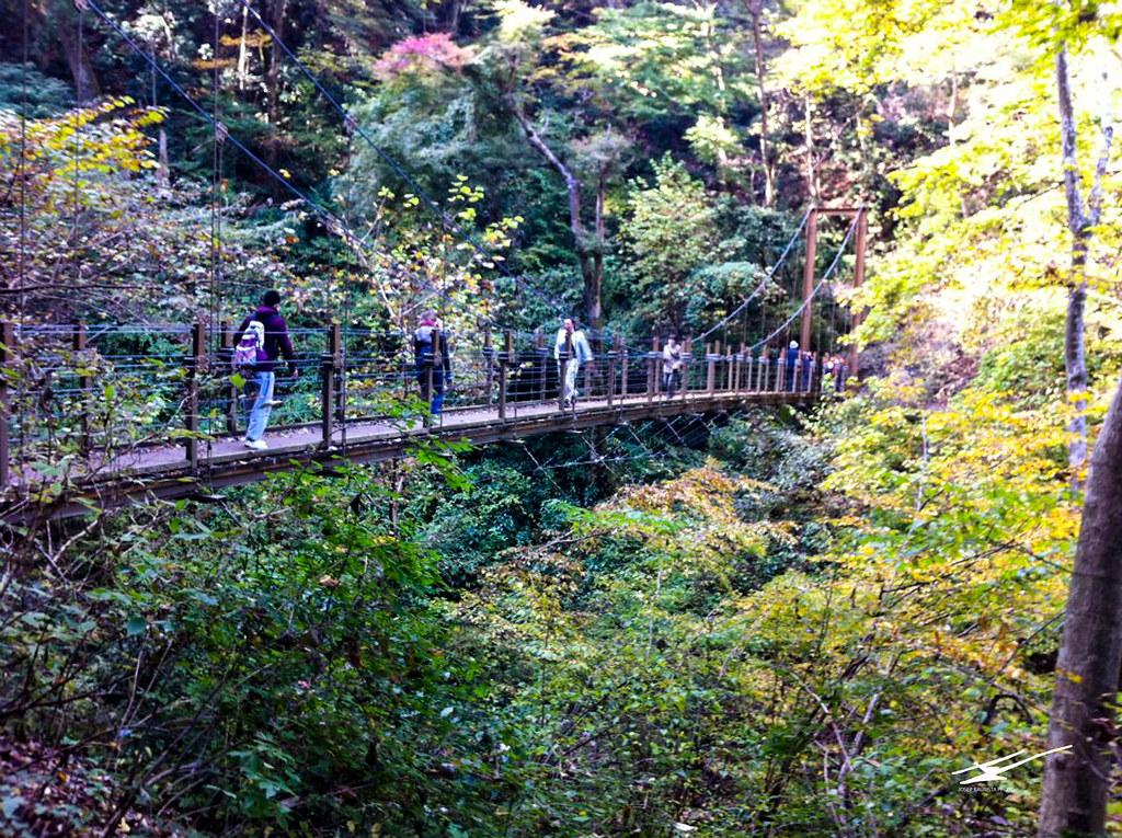 Mt. Takao_11