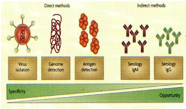 एव्ल्यूशन ऑफ डायग्नोस्टिक टेस्ट्स : नेचर रिव्यू माइक्रोबायोलॉजी