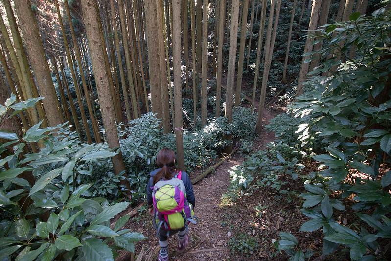 20161210-浜石岳-0194.jpg