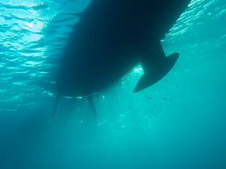 Yellow Submarine (Bonaire)