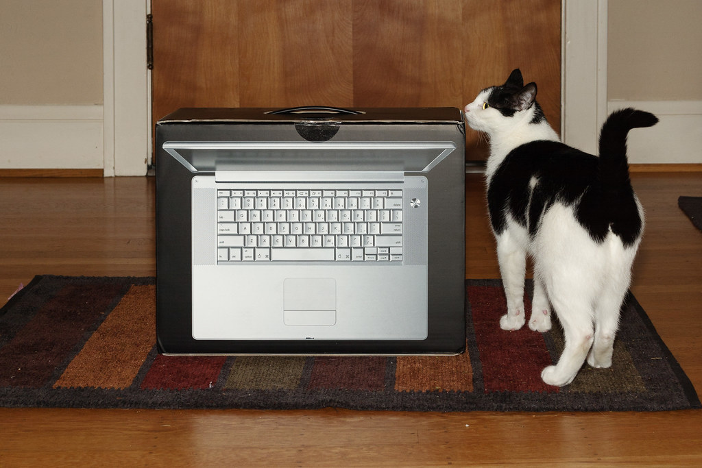 Our black-and-white cat Scout inspects the box of the new 15 inch Apple Powerbook