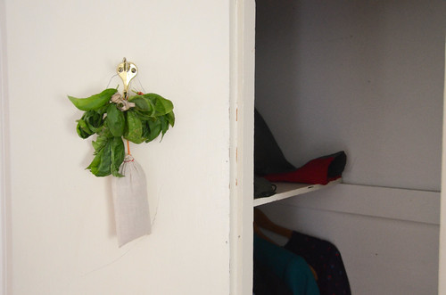 3. Hang in cool, dry space