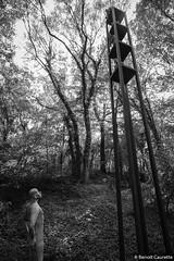 La tour des femmes, par Christina Wendt - Ile Art, Malans, août 2017