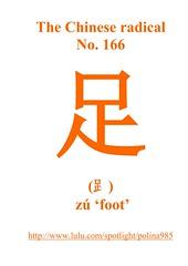 No. 166 足  (⻊)  zú 'foot'