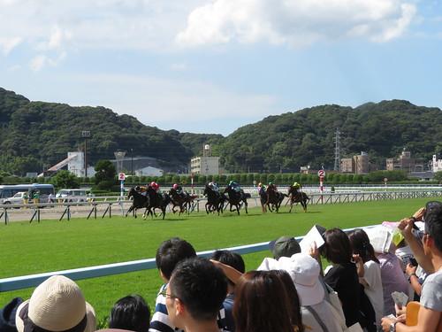 小倉競馬場のレース風景