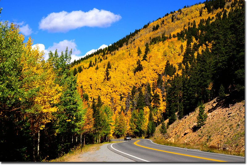 Fall colors, Mount Evans Scenic Byway, Colorado (52)