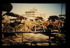 Coarch In Lahore = ラホールの馬車
