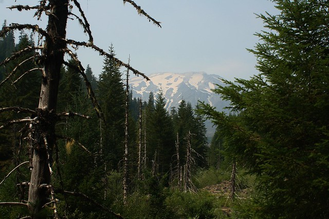 June Lake camping