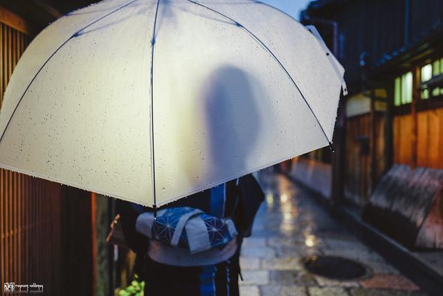 十年,京都四季 | 卷四 | 那兒春色滿城 | 20