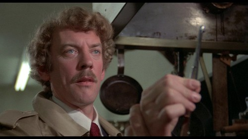 Invasion of the Body Snatchers - 1978 - screenshot 1