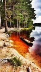 Loch of Gold