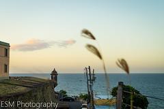 One summer afternoon in San Juan, PR.