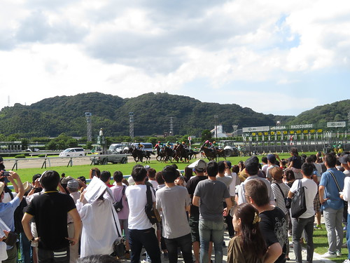 小倉競馬場のスタート