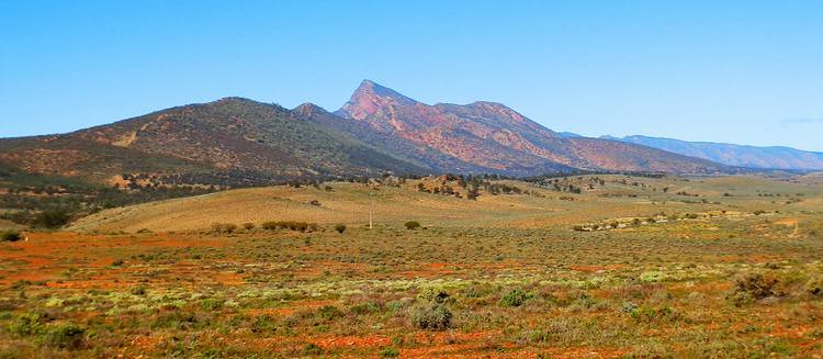 St Marys Peak from west of the ranges outside Wilpena Pound, Flinders Ranges, South Australia